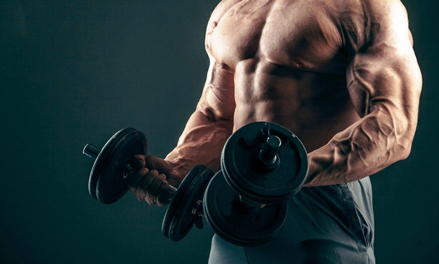 Best Oral Steroids for Bodybuilding
